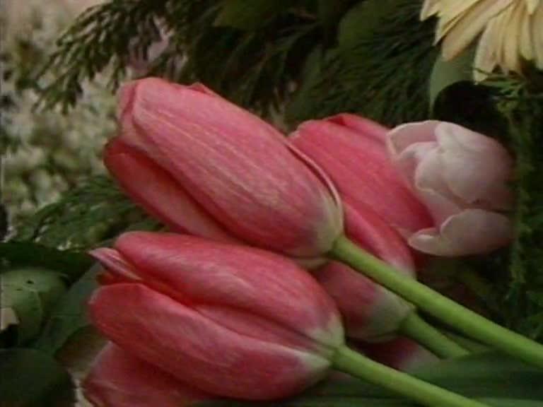 Des fleurs pour Simone de Beauvoir